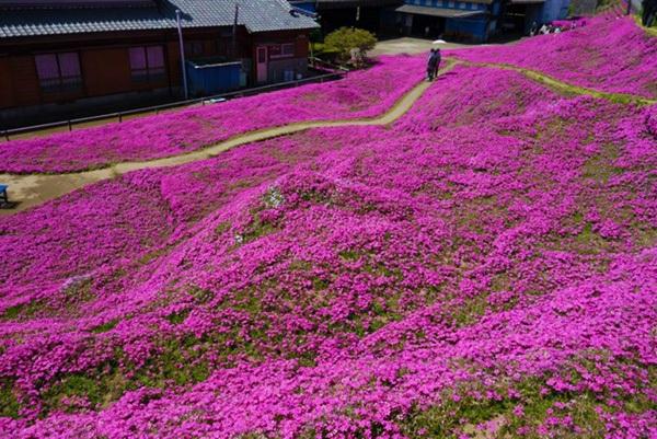 turistas en jardín de Toshiyuki Kurogi y Yasuko Kuroki